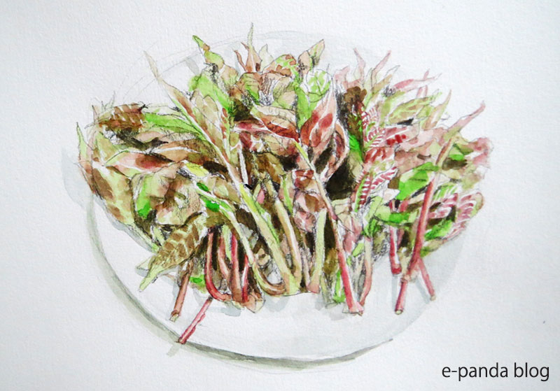 springfood2